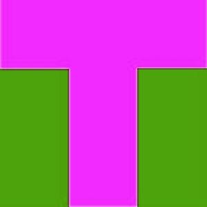 t-point4