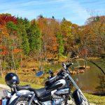 岡崎市発 バイクツーリングで茶臼山まで行って紅葉を見てきた 前編